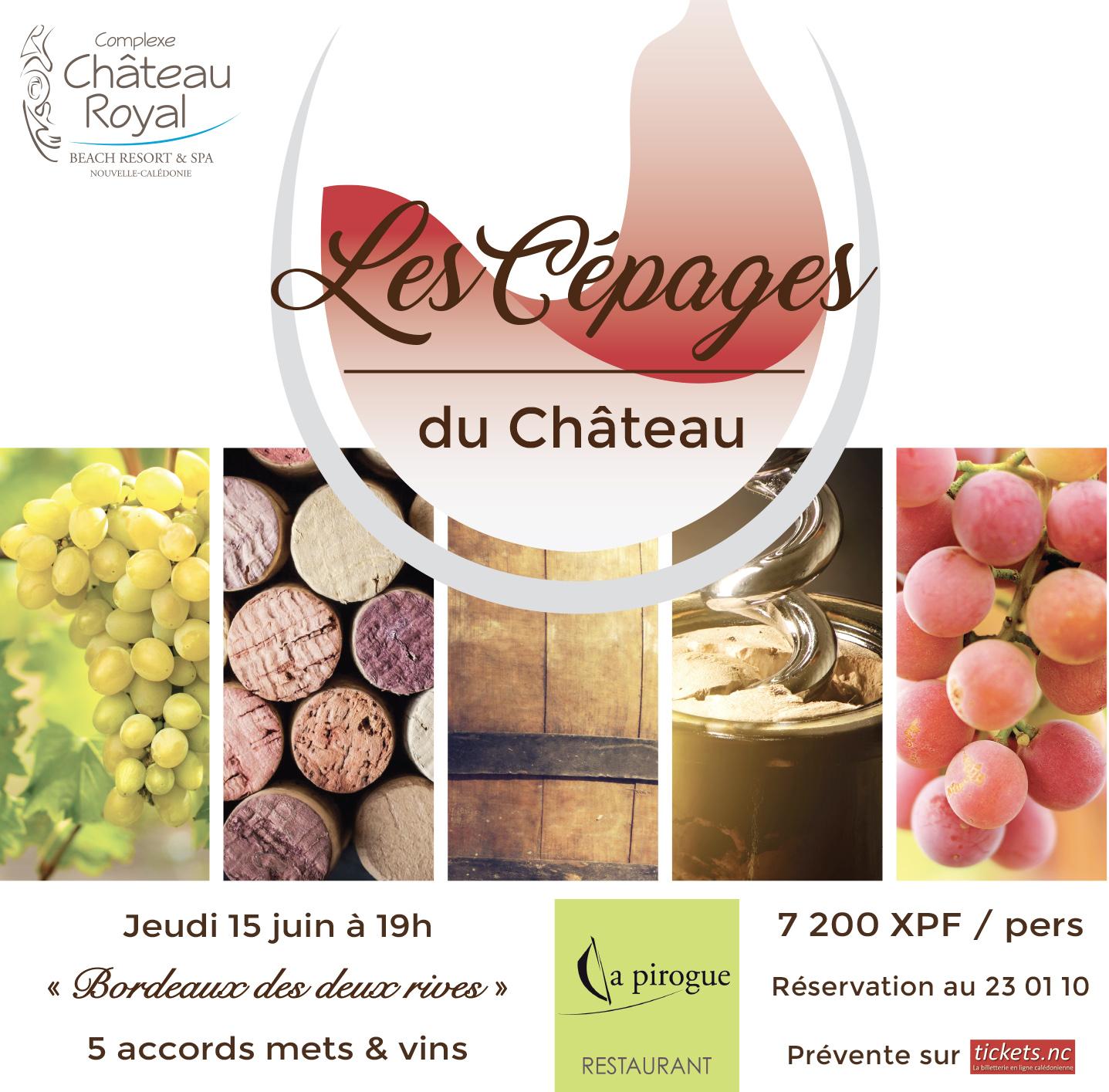 cepages-du-chateau-DNC-42x42-.jpg